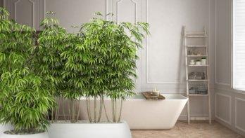 Duurzamer in de badkamer